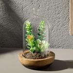 Cam Plastik Vazolu Yapay Çiçek 10x10x17 Cm Green