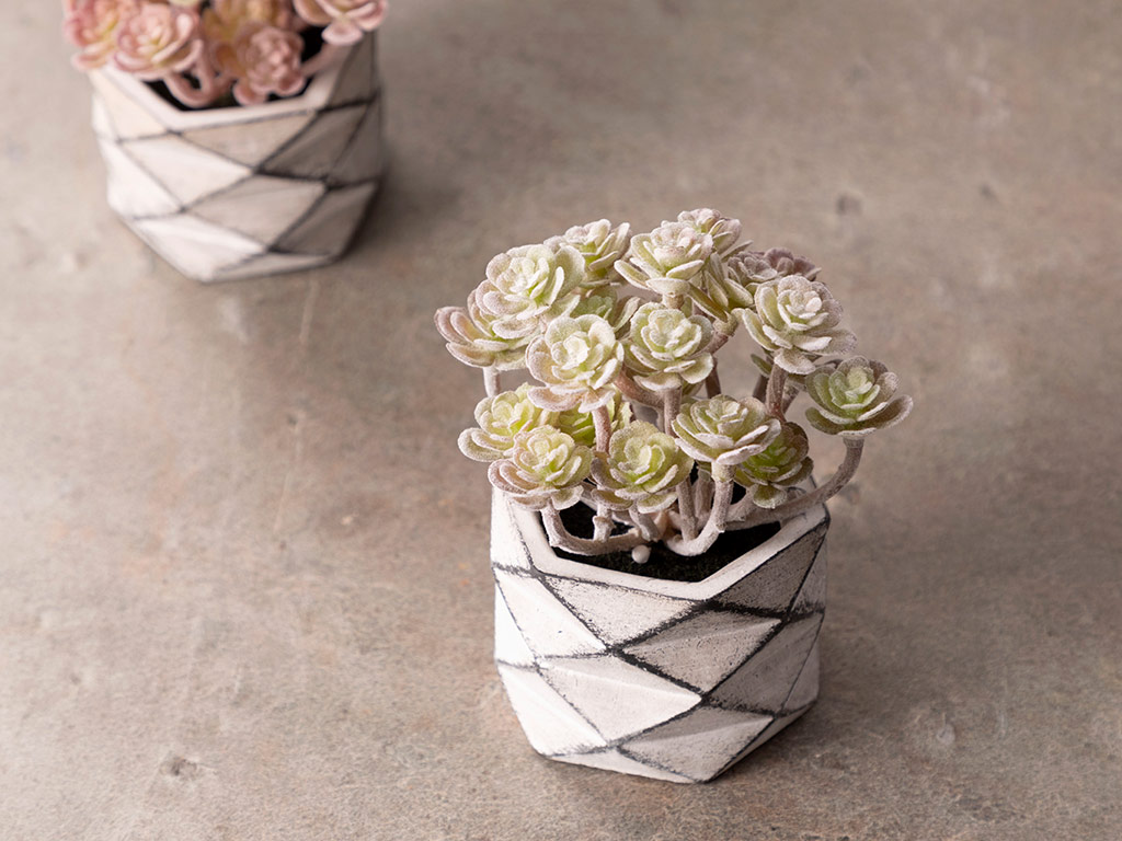 Succulent Ball Vazolu Yapay Çiçek 11,4x11,4x42,2 Cm White
