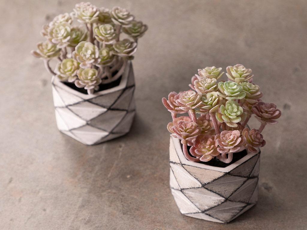 Succulent Ball Vazolu Yapay Çiçek 11,4x11,4x42,2 Cm Pink