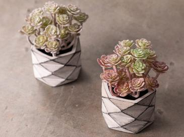 Succulent Ball Изкуствено Цвете с Ваза 11,5x11,5x11,8 См Розово