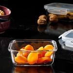 Pure Glass Rectangular Storage Box 320 Ml Maroon