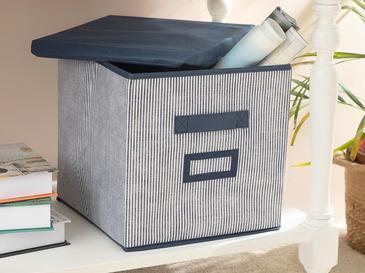 Royal Stripe Кутия за Съхранение Полипропилен 30x30x30 См Тъмносиньо