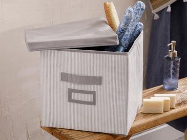 Royal Stripe Кутия за Съхранение Полипропилен 30x30x30 См Сиво
