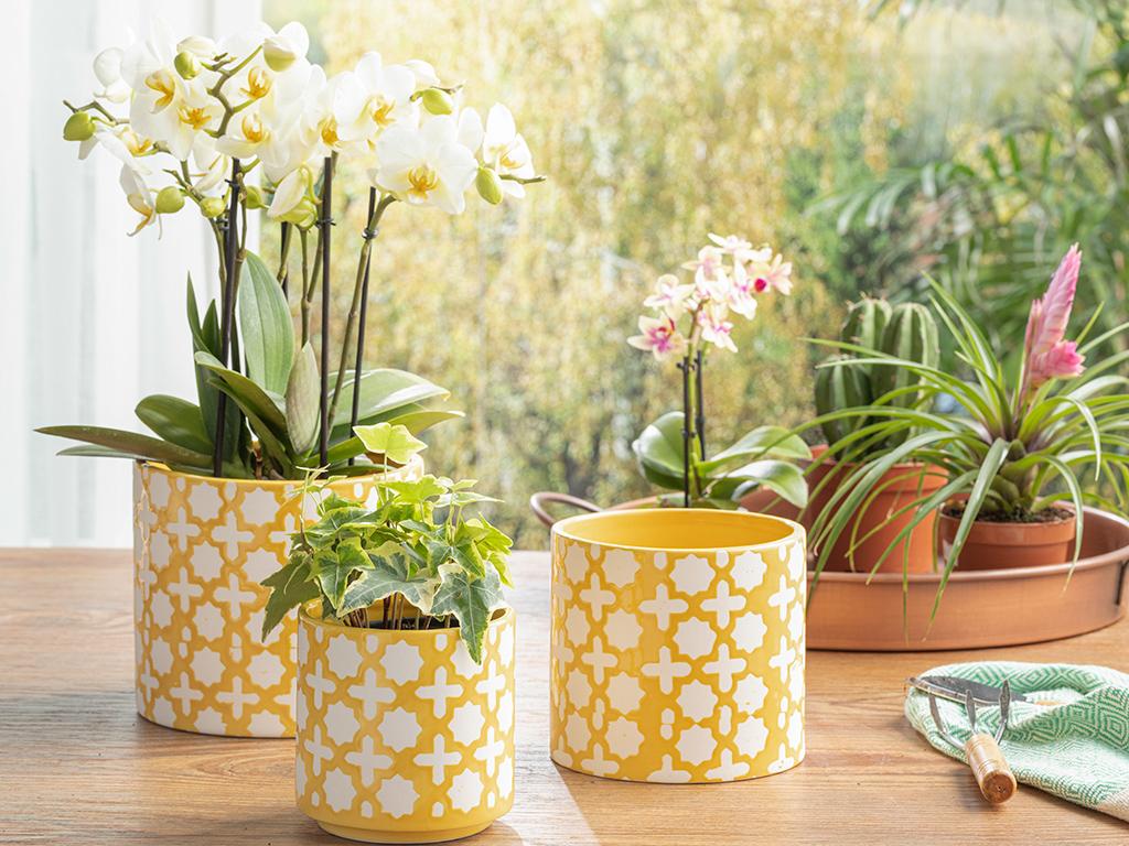 Sun Garden Flowerpot Sarı