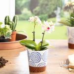 Mysterious Circle Flowerpot Mavi