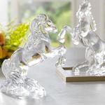 Decoratıve Object Transparent